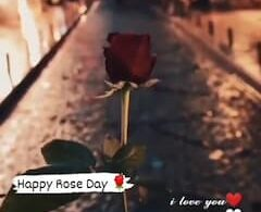 Rose Day Status Video Song Romantic WhatsApp Wishes Download